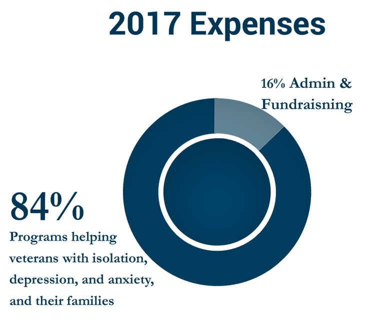 2017 expense graph